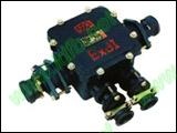 BHD2-200A-4T隔爆型电缆接线盒