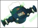 BHD2-40A-2T隔爆型电缆接线盒